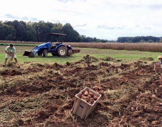FarmerProfile2018_ClemsonStudent