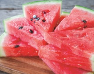 Watermelon-Newsletter-1